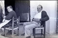 Vicente-y-Feli